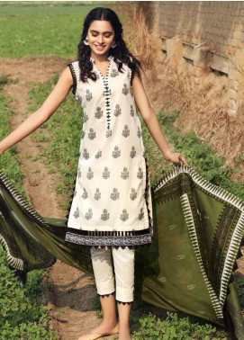 Gul Ahmed CL1183A Basic Lawn